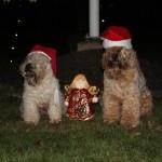 God Jul och Gott Nytt År!!